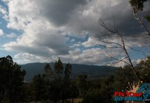 Cedro Peak Sky