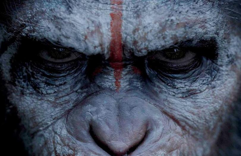 hr_Dawn_of_the_Planet_of_the_Apes_37
