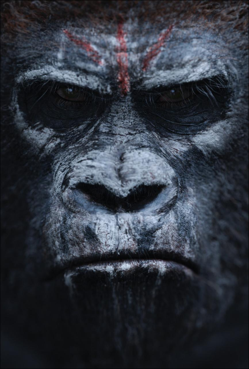 hr_Dawn_of_the_Planet_of_the_Apes_6