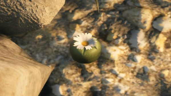 Where To Find All of GTA V's Secret Peyote Plants