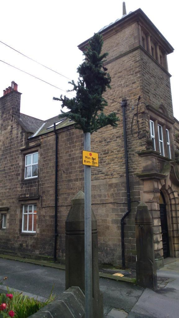 The 13 Most Ridiculous Christmas Trees In England