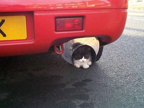 exhaust-pipe4-1