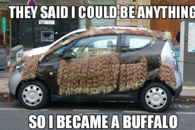 funny-cars-17