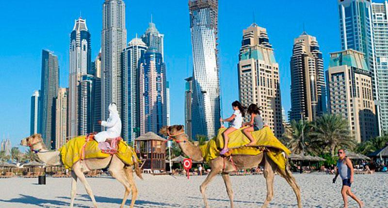 Dubai Wealth (25)