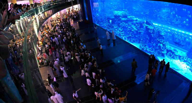 Dubai Wealth (7)