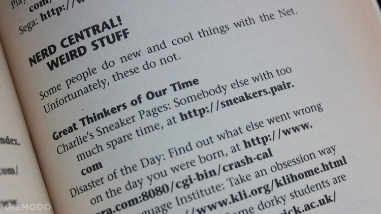 1995 Guide to Surfing the Internet