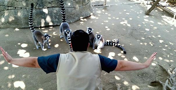 zookeepers-recreating-jurassic-world-raptor-scene-19__605