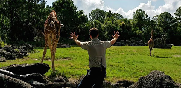 zookeepers-recreating-jurassic-world-raptor-scene-26__605