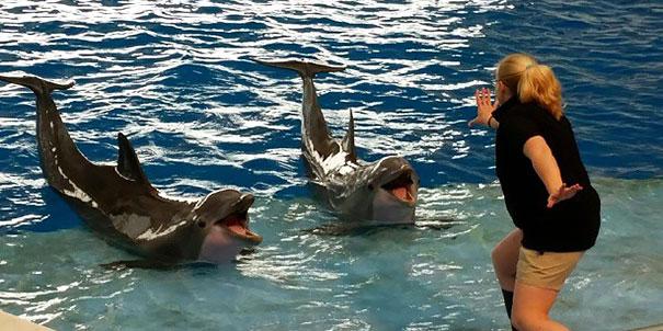 zookeepers-recreating-jurassic-world-raptor-scene-32__605