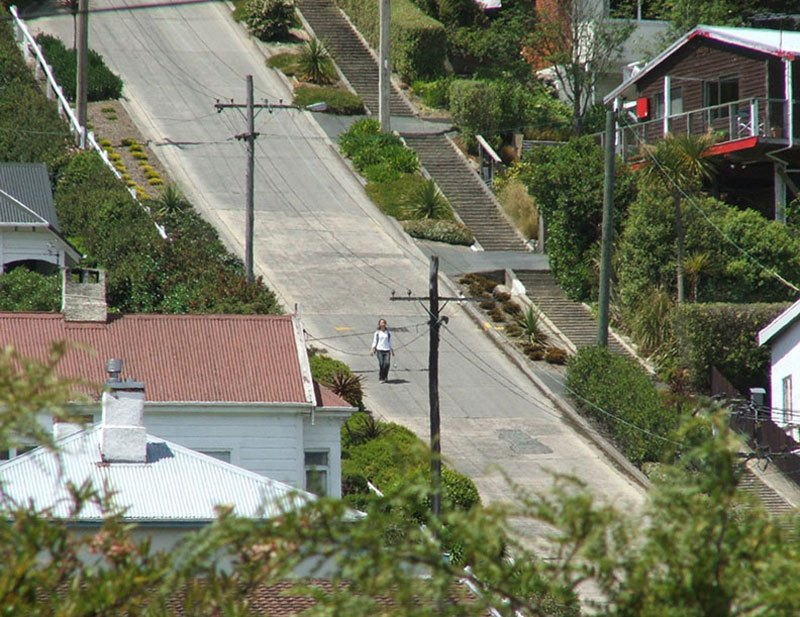 Baldwin, the Steepest Residential Street in the World