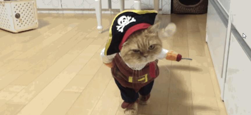 Most Cutest Pirate This Halloween Season