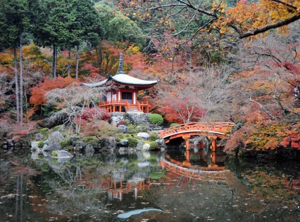 Park Ji Daigo, Japan