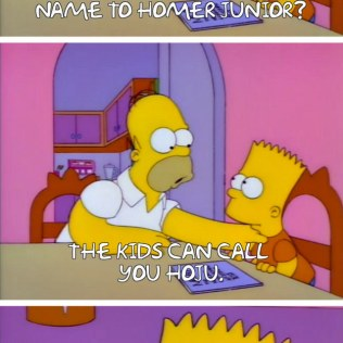Homer Simpson Quotes (22)