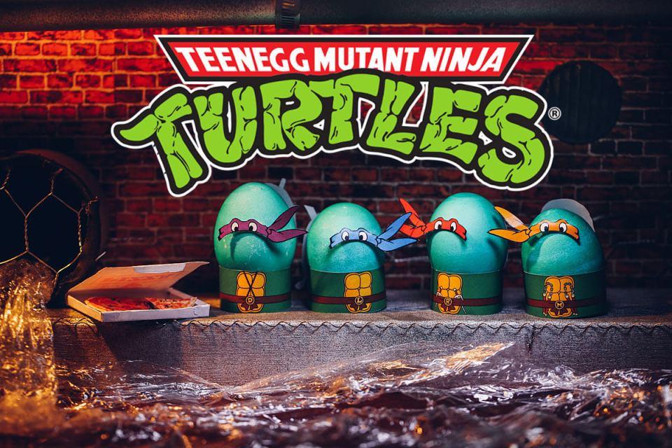 Teenage Mutant Ninja Turtle Egg Costumes
