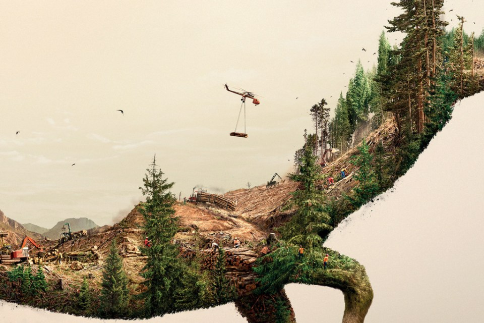 illustrations-show-how-destroying-nature-destroys-life-7