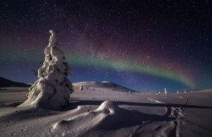 Magical Night in Lapland