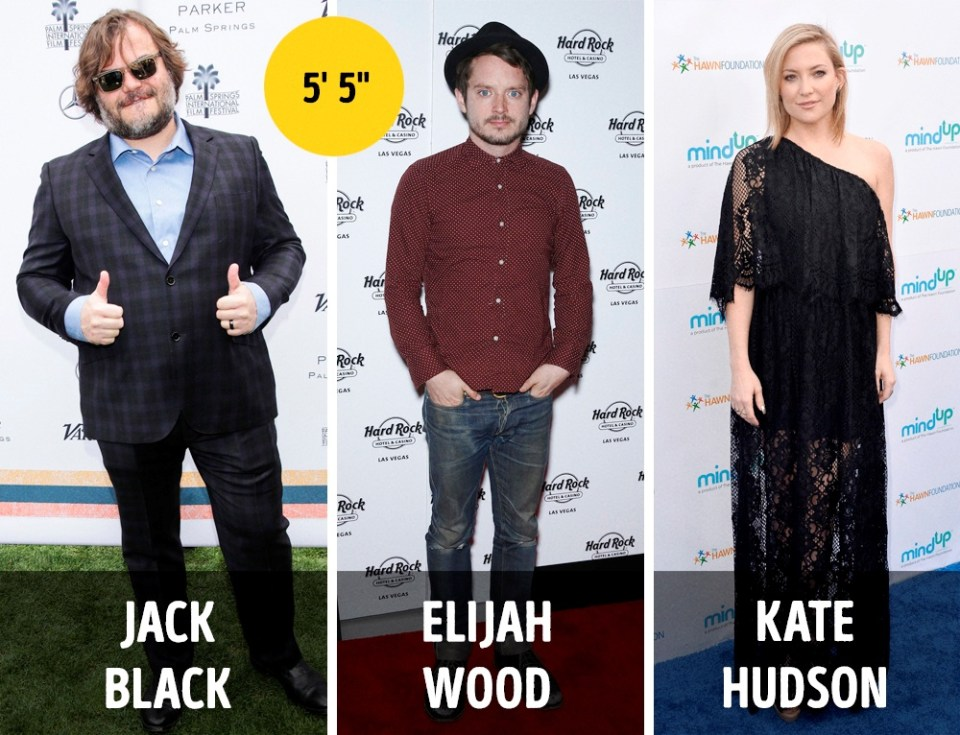 Celebrities Heights
