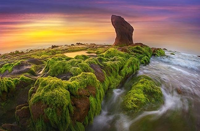 Vietnamese+nature