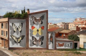 3d-buterfly-specimen-boxes-by-mantra-4