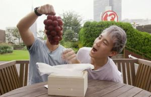 japanese grapes