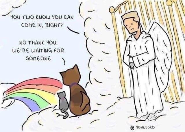 Hilarious Comic Cartoon Strips
