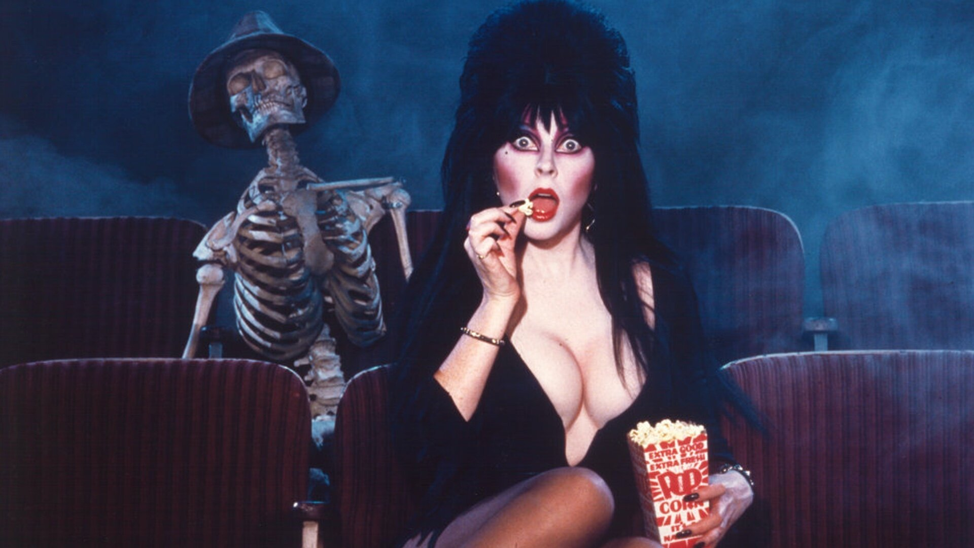Here Is The List Of Horror Movies Recommended By Elvira To Watch