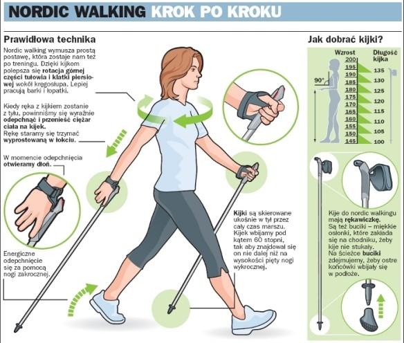 fizjoterapia częstochowa nordic walking 2 - Kijki do NW