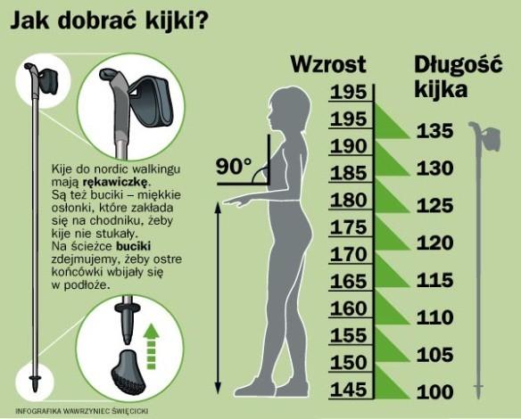 fizjoterapia częstochowa wysokość kijków do nordic walking - Kijki do NW