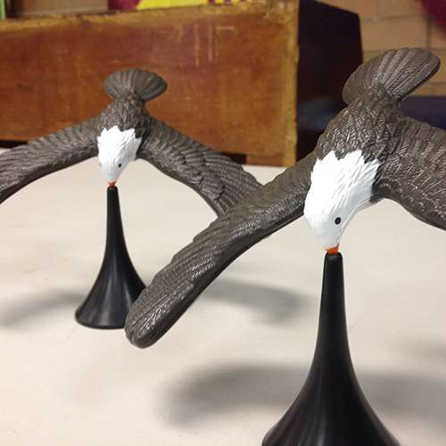 Two birds balancing on their noses on a white table