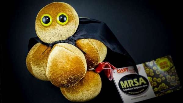 Gigantic The MRSA Plush Toy