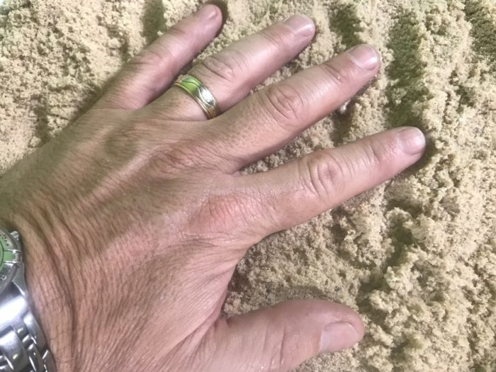 Collect animal footprints -pushing hand into sand