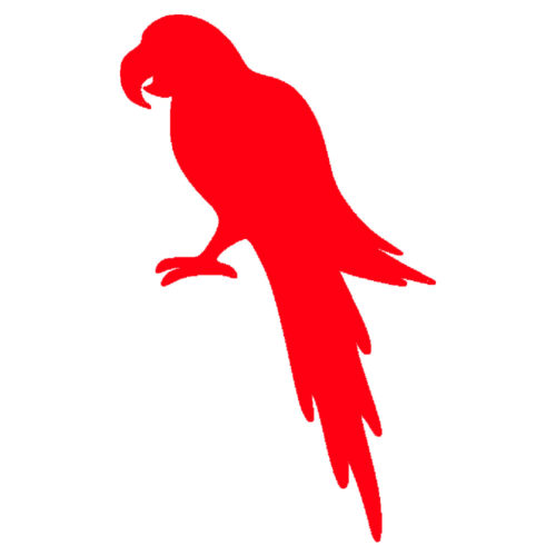red parrot picture
