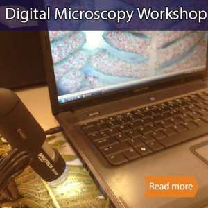 Digital microscopy school science visit tile showing a digital microscope viewing a fern and the image being on a computer screen