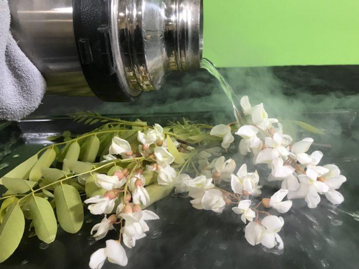 Freezing a flower in liquid nitrogen - pouring liquid nitrogen on the flowers
