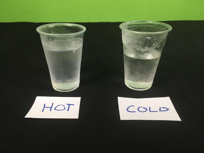 What freezes first, hot or cold water Science Experiment - end results