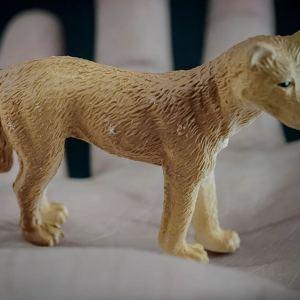 Dingo replica