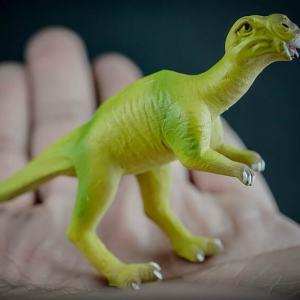 Muttaburrasaurus dinosaur replica