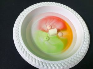 Skittle science experiment - sugar cube added to center of the plte