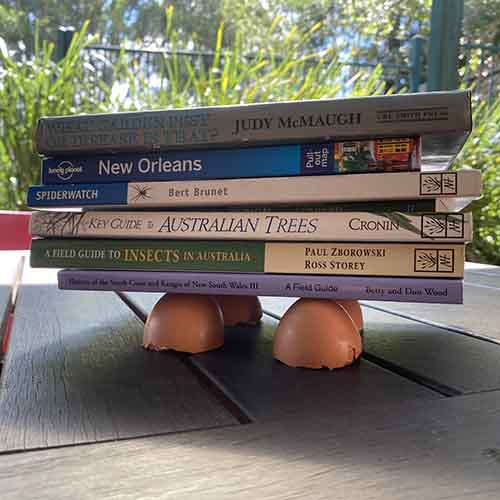 4 eggshell halves holding a stack of books up