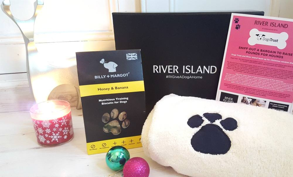 River Island - Give a Dog a Home Campaign