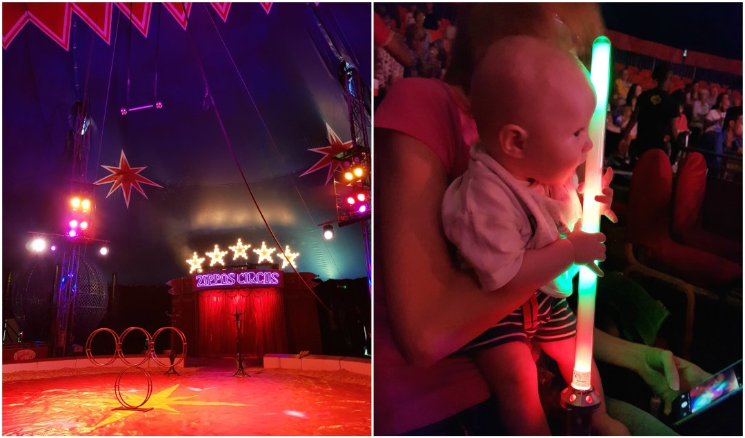Zippos Circus & ice cream by the sea
