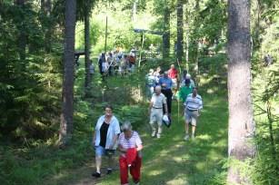 kyrkstigsvandring-skogen