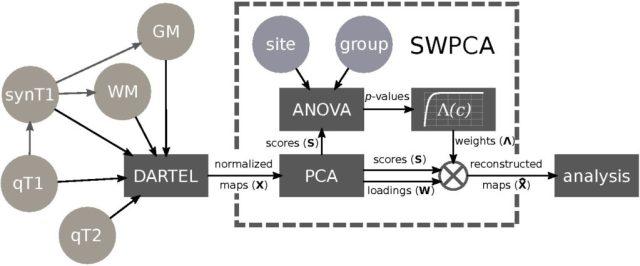 SWPCA pipeline