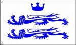 Berkshire flag 5ft x3ft