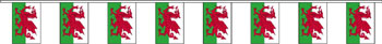 Wales bunting 9m