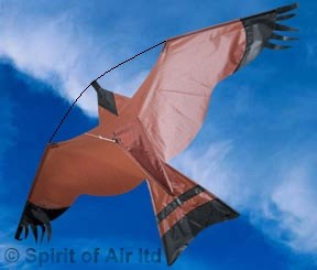 Crop protection kit Hawk kite great as a bird scarer with 5m pole and ground stake