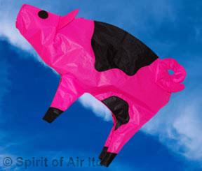 Pig Windsock