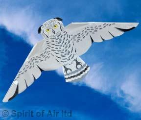 Snowy owl kite by Spirit of Air