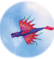 Dragon windsock by Spirit of Air in purple and pink High quality