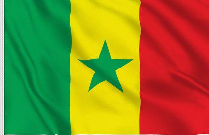 """Résultat de recherche d'images pour """"Senegal drapeau"""""""